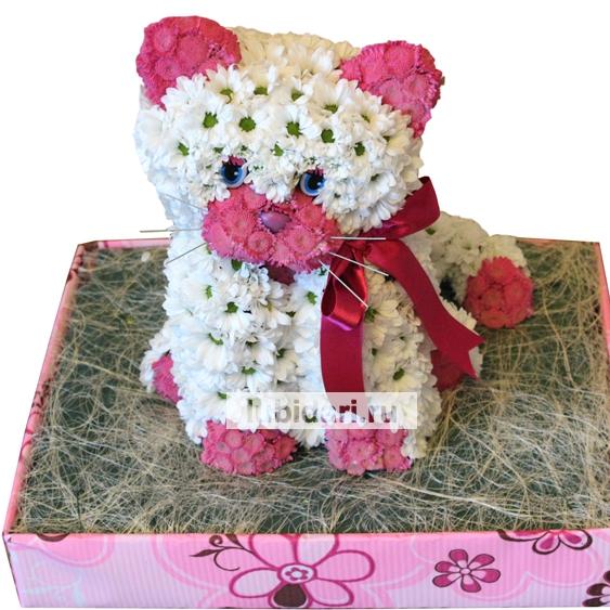 Кот из живых цветов своими руками 26