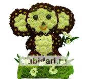 Чебурашка пушистик из цветов