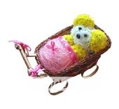 Младенец в коляске из цветов