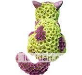 Кот из цветов из цветов