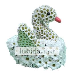 Лебедь расправил крылья из цветов