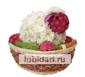 Цветочный Овен из цветов