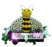 Пчелка Мая на поляне цветущих орхидей из цветов