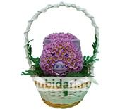 Поросёнок в корзинке из цветов