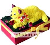 Солнечный котенок из цветов