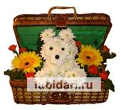 Собачка в сундучке большая из цветов