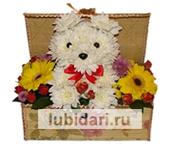 Собачка в сундучке 2 из цветов