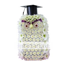Сова-Профессор из цветов