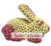 Зайчик - розовые пятнышки из цветов